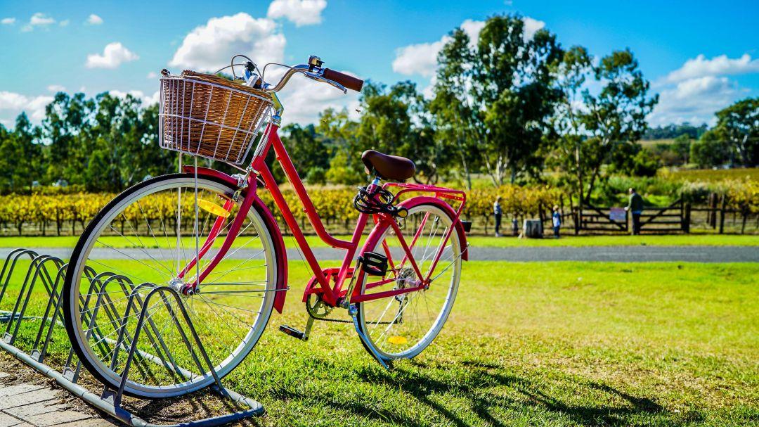 balade à vélo à la Meinau et au Neuhof